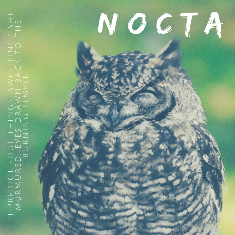 Nocta