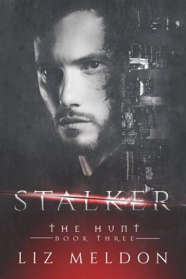 Stalker (The Hunt, #3)