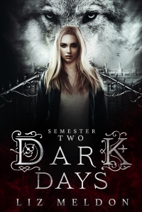 dark days semester 2 cover